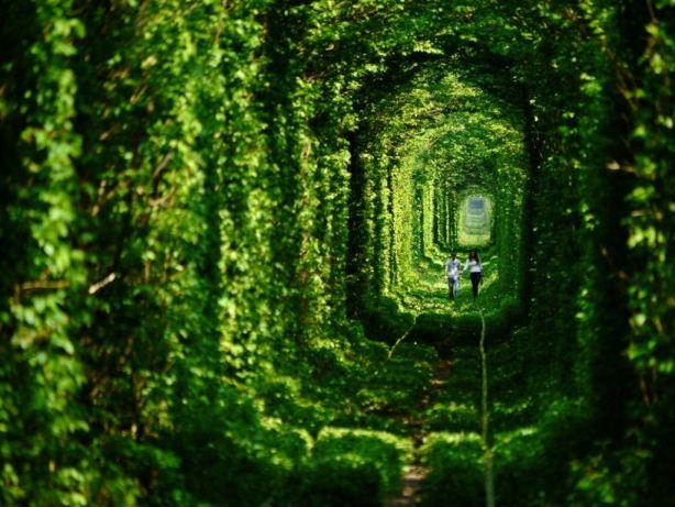 Túnel do Amor (Ucrânia)