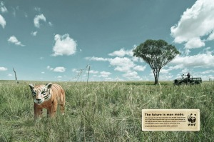 public-social-ads-animals-17