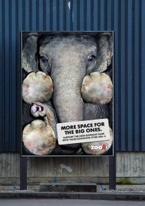 public-social-ads-animals-47